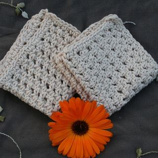 Cotton Washcloth/Dishcloth (2 pack)