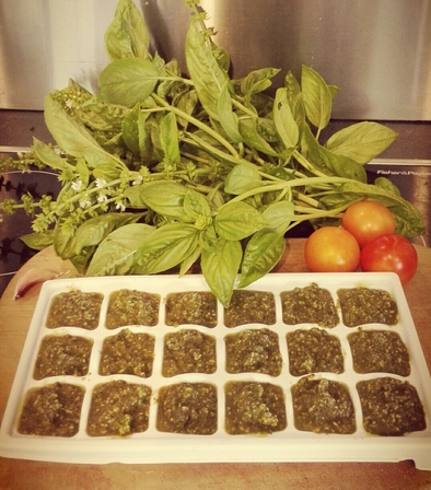 Easy Pesto Recipe